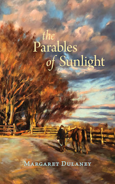 The Parables of Sunlight by Margaret Dulaney